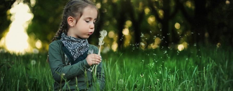 dziewczyna siedzi na zielonej łące z dmuchawcem